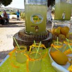 lemonada-spitiki-se-giala
